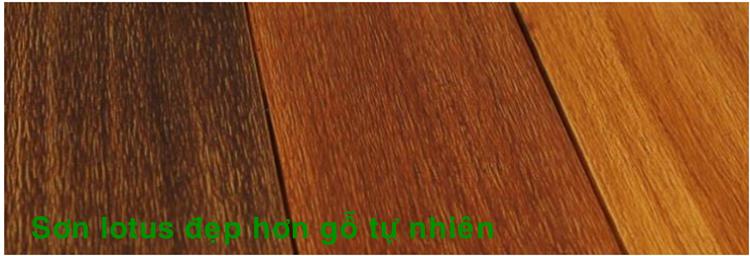 Màu sơn giả gỗ lotus đẹp hơn gỗ tự nhiên.